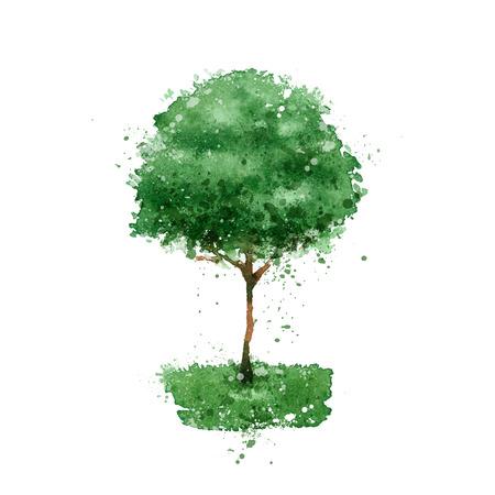 abstract family: Tree.  Illustration