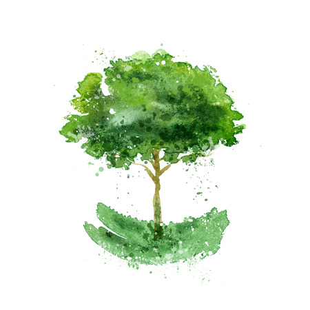 isolar: �rvore. Ilustra��o