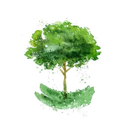 folha: �rvore. Ilustração