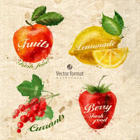 Fruits  イラスト・ベクター素材