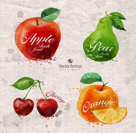 albero di mele: Frutti Vettoriali