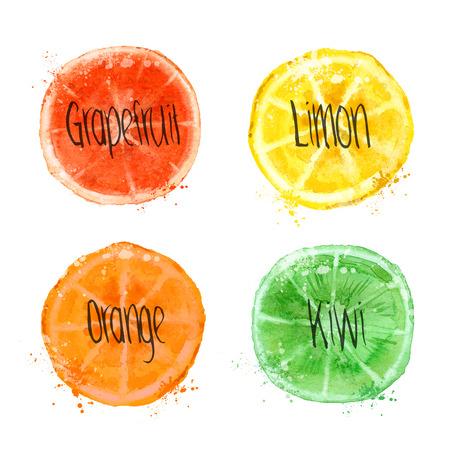 limon: Fruits Illustration