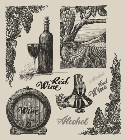 winemaking: Hand drawn vector wine and winemaking set Illustration