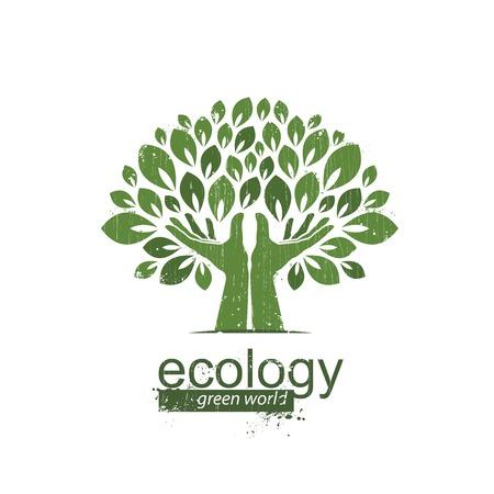 feuille arbre: Ecologie, l'ic�ne est une main et un arbre � croissance Illustration