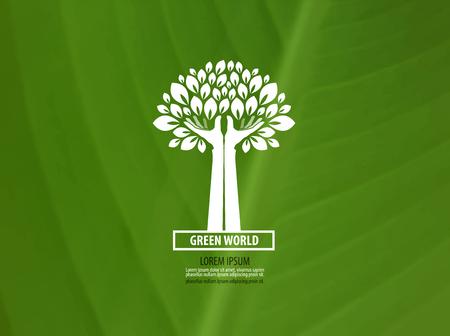 hojas de arbol: Ecolog�a. icono del producto natural. ilustraci�n vectorial