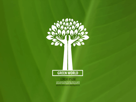 feuille arbre: Ecologie. ic�ne du produit naturel. illustration vectorielle Illustration
