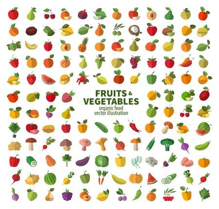 owoców: Zbiór ikon na owoce i warzywa. Świeże jedzenie