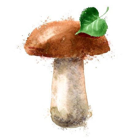 nature one painted: watercolor drawing. fungus on a white background. vector illustration