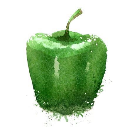 watercolor drawing. pepper on a white background. vector illustration