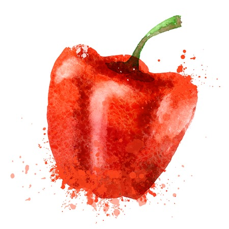 watercolor. red pepper on a white background. vector illustration