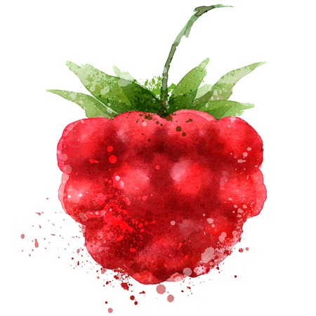 Berry vector logo design template. Raspberry or food icon. Çizim