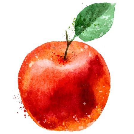 Red Apple on a white background. vector illustration