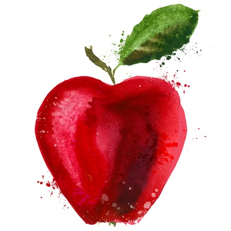 red apple: watercolor. Red Apple on a white background. vector illustration Illustration