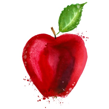 watercolor. Red Apple on a white background. vector illustration Illustration