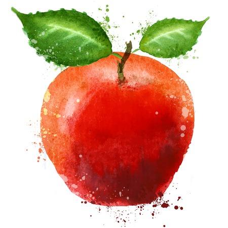 aquarel. Rode appel op een witte achtergrond. vector illustratie