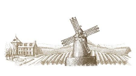 harvest field: old mill in the village. vector illustration Illustration