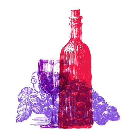 sauvignon: the sketch. a bottle of wine on a white background. vector illustration Illustration