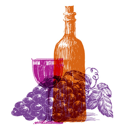 the sketch. wine on a white background. vector illustration Vector