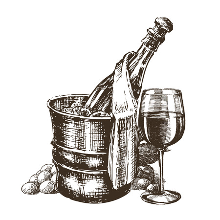 botella champagne: ilustraci�n. champ�n en un fondo blanco. bosquejo