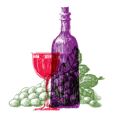 still life food: winemaking,  vineyard on a white background. sketch Stock Photo