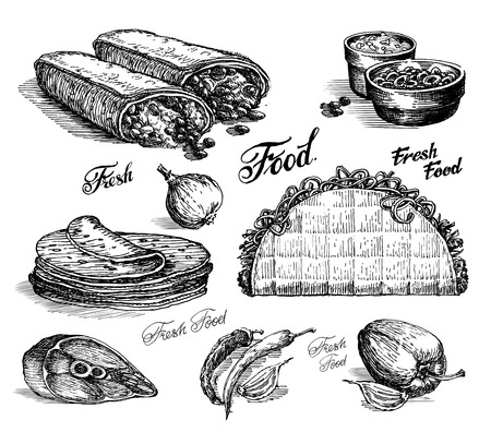 sketch. fast food. burritos and tacos on white background