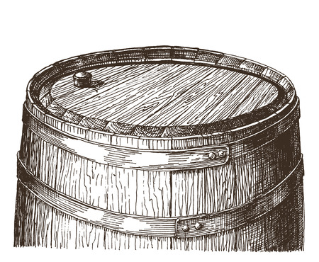 sketch. wooden barrel on a white background