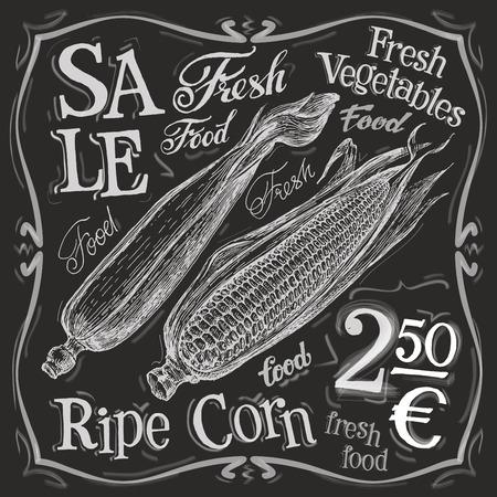 palomitas: maíz maduro sobre un fondo blanco. ilustración vectorial