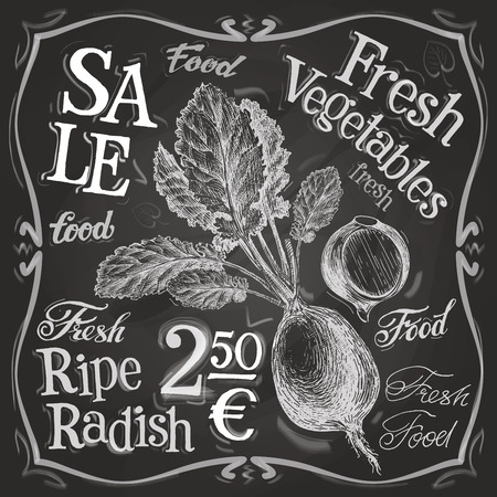 deli: ripe radish on a black background. vector illustration