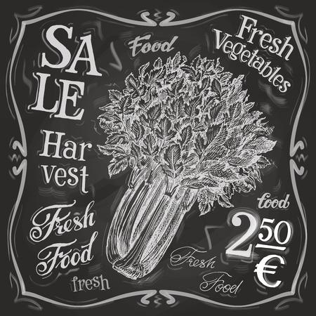 ripe vegetables on a black background. vector illustration Vector