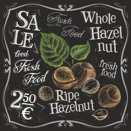 hazelnut: ripe nuts on a black background. vector illustration Illustration