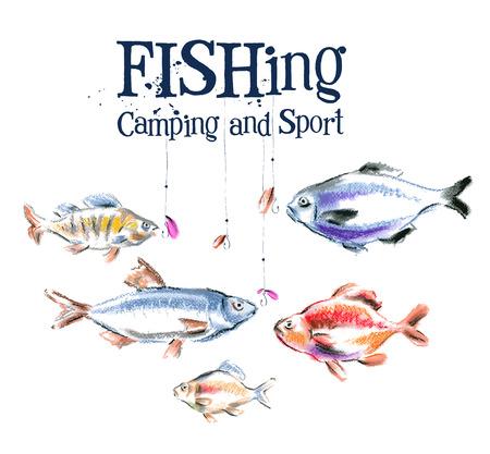 carpa: colecci�n de peces sobre un fondo blanco. ilustraci�n vectorial Vectores