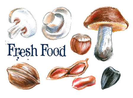 fresh food on a white background. vector illustration