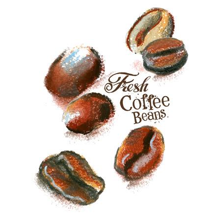 grãos de café em um fundo branco. ilustração vetorial