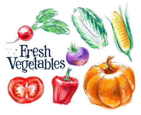 fresh vegetables on white background. vector illustration Ilustracja