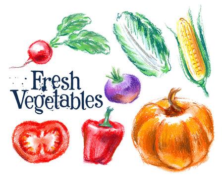 fresh vegetables on white background. vector illustration Vettoriali