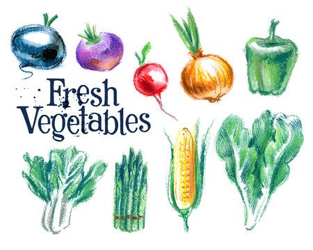 caldera: fresh vegetables on white background. vector illustration Illustration