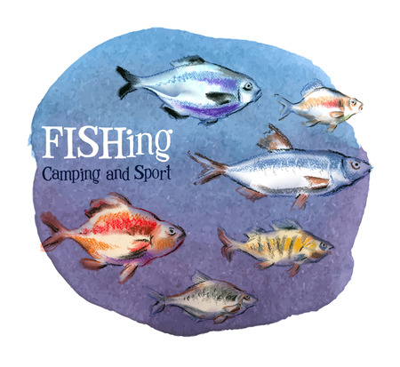 fresh fish on a white background. vector illustration Vector