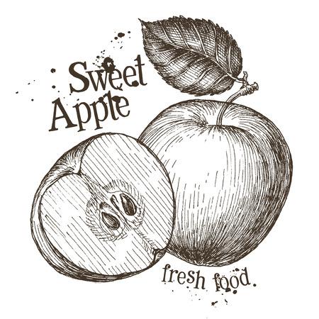 deli: ripe apples on a white background. vector illustration Illustration