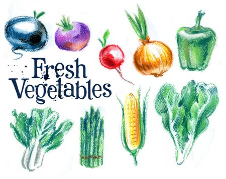 eating habits: agriculture on a white background. illustration, sketch