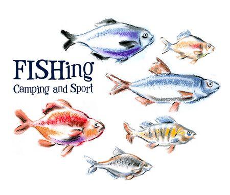 seafood on a white background. illustration, sketch illustration