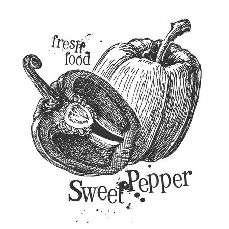 peper: fresh vegetables on a white background. illustration Stock Photo