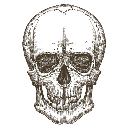 the head of a dead man on a white background. vector illustration Vector