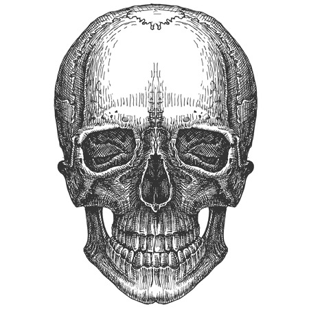 mortality: the head of a dead man on a white background. illustration