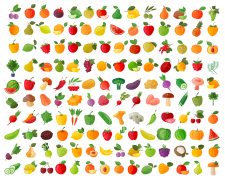 fruits and vegetables on a white background. vector illustration