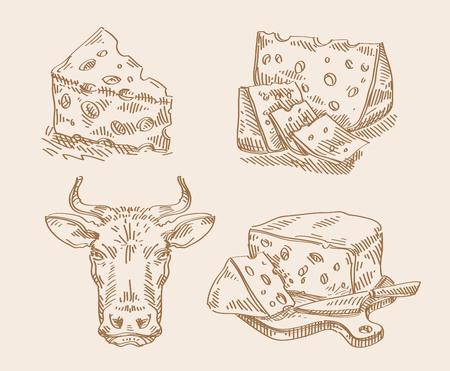 チーズと明るい背景に牛。スケッチします。ベクトル図