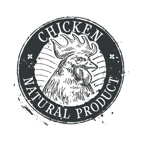 gallo: gallo en un fondo blanco. bosquejo. ilustración vectorial Vectores