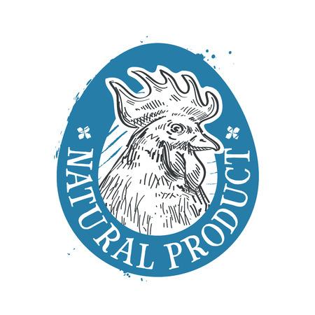 gallo: head chicken on a white background. vector illustration
