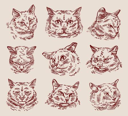 vintage drawing: set of cats on a light background. sketch. illustration Illustration