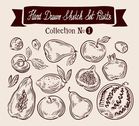 feuille de figuier: collection dessinée à la main des fruits. illustration vectorielle Illustration