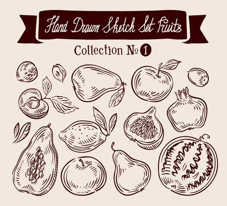 illustration collection: hand-drawn collection of fruit. vector illustration